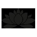0606_Lotus