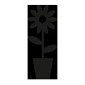 0608_Flower