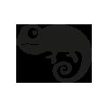 0713_Chameleon